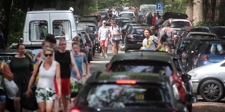Andermaal verkeerschaos rond populaire zwemplassen 't Nije Hemelriek en het Gasselterveld