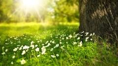 Warmste 6 april ooit in Drenthe.